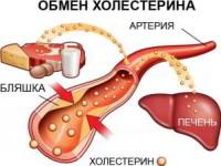 Как снизить холестерин в крови народными средствами