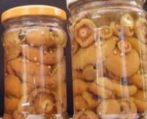 рецепт  Засолка грибов - холодный способ
