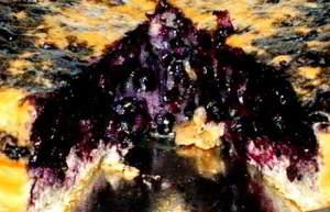 Черничная шарлотка