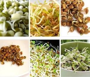Пророщенные злаки, орехи и семена