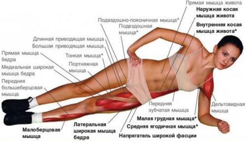 Планка - одно упражнение для всех мышц
