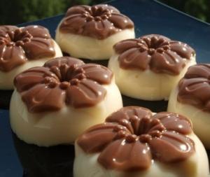 Желе из топлёного молока с шоколадом