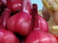 Чеснок в соке красной смородины с яблочным уксусом на зиму