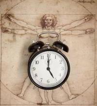 Биологические часы человеческого тела