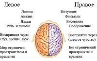 Как стимулировать мозг работать с новой силой
