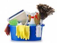 Чистота и порядок в доме — основы здоровья !