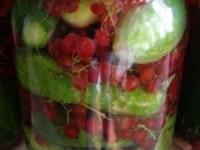 Огурцы с красной смородиной в маринаде на зиму